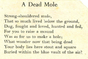 mole text snip1