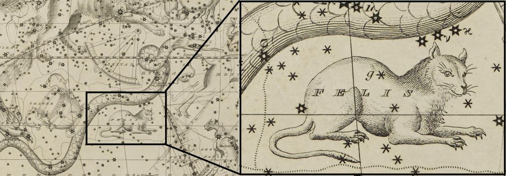 Extract of Felis : Image taken from Celestial Atlas and modified (DOD ID: 125365899)