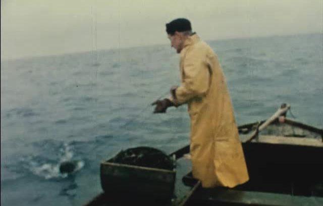 Still from 'The Last Fisherman'